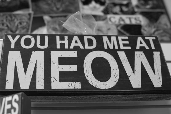 my favorite saying...